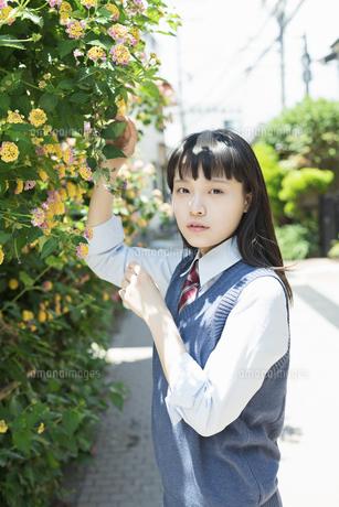 女子高生 花の写真素材 [FYI01224737]