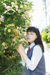 女子高生 花の写真素材 [FYI01224738]