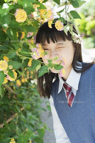 女子高生 花の写真素材 [FYI01224741]