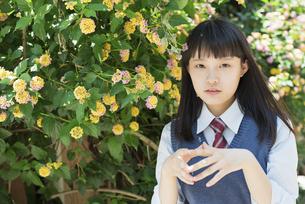 女子高生 花の写真素材 [FYI01224742]
