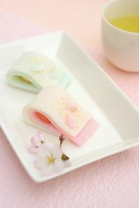 花ごろも 桜の花びらと蝶々の写真素材 [FYI01224790]