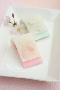 花ごろも 桜の花びらと蝶々の写真素材 [FYI01224792]