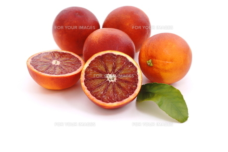 ブラッドオレンジの写真素材 [FYI01224870]