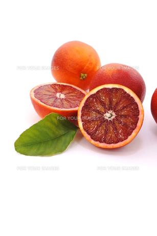 ブラッドオレンジの写真素材 [FYI01224872]