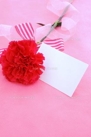 母の日・メッセージカードの写真素材 [FYI01224876]