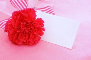 母の日・メッセージカードの写真素材 [FYI01224877]