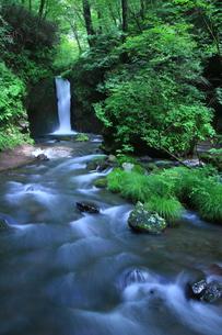 軽井沢町竜返しの滝の写真素材 [FYI01225003]