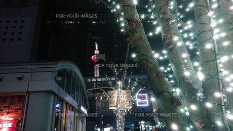 夜とタワーと光の写真素材 [FYI01225011]