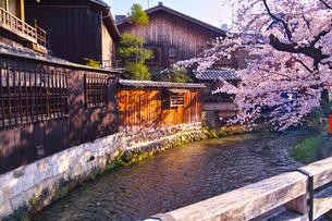 春の京都、満開の桜咲く祇園白川の風景の写真素材 [FYI01225145]