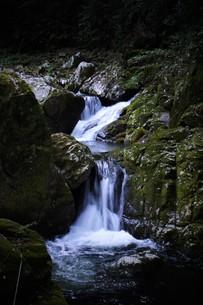赤目四十八滝の写真素材 [FYI01225151]