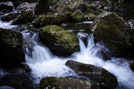 赤目四十八滝の写真素材 [FYI01225152]
