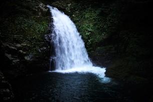 赤目四十八滝の写真素材 [FYI01225154]