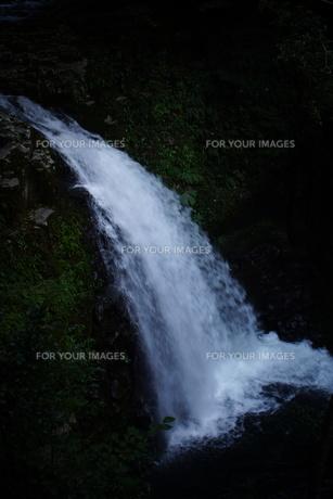 赤目四十八滝の写真素材 [FYI01225156]
