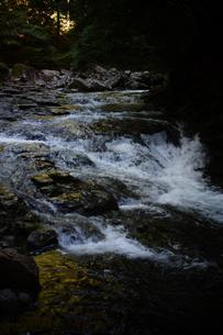 赤目四十八滝の写真素材 [FYI01225157]
