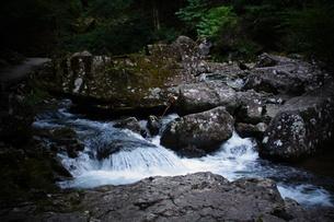 赤目四十八滝の写真素材 [FYI01225160]