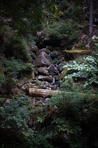 赤目四十八滝の写真素材 [FYI01225162]