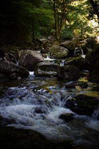 赤目四十八滝の写真素材 [FYI01225163]