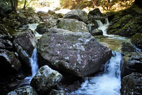 赤目四十八滝の写真素材 [FYI01225165]