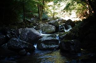 赤目四十八滝の写真素材 [FYI01225167]