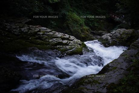 赤目四十八滝の写真素材 [FYI01225169]