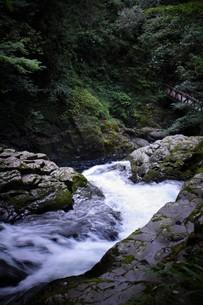 赤目四十八滝の写真素材 [FYI01225170]