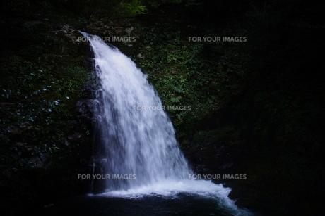 赤目四十八滝の写真素材 [FYI01225171]