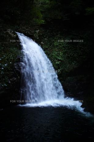 赤目四十八滝の写真素材 [FYI01225172]