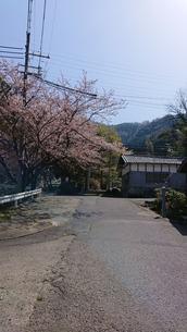 神社へと続く道の写真素材 [FYI01225198]
