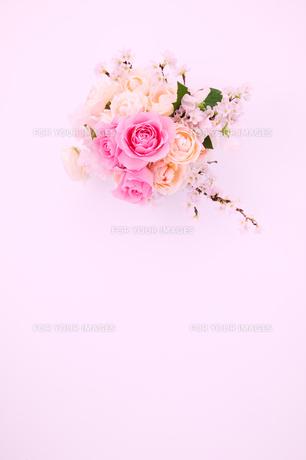 バラのイメージ 2の写真素材 [FYI01225256]