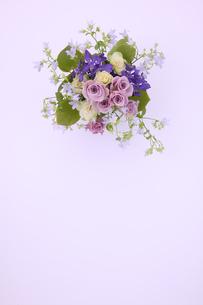 バラのイメージ 1の写真素材 [FYI01225257]