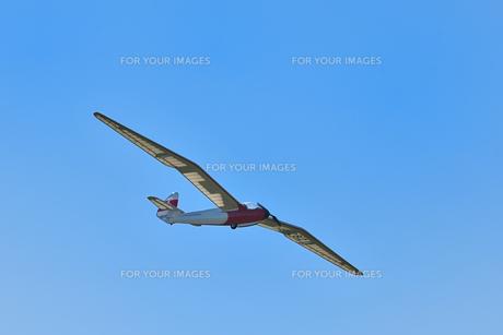 ラジコングライダーの写真素材 [FYI01225327]
