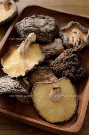 干し椎茸の写真素材 [FYI01226501]