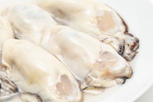 生牡蛎のアップの写真素材 [FYI01226543]