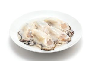 生牡蛎のアップの写真素材 [FYI01226545]