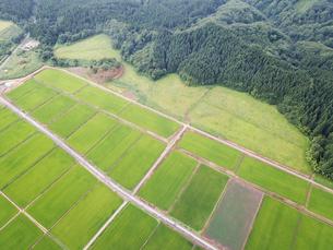 田園上空からの空撮の写真素材 [FYI01226570]