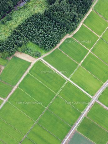 田園十空からの空撮の写真素材 [FYI01226571]