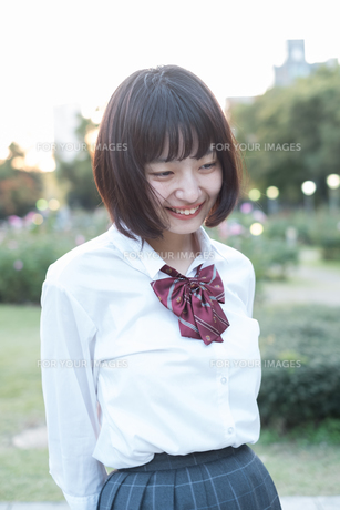 ハニカム女子高生の写真素材 [FYI01226615]