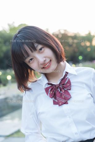 微笑んでこちらを見ている女子高生の写真素材 [FYI01226616]
