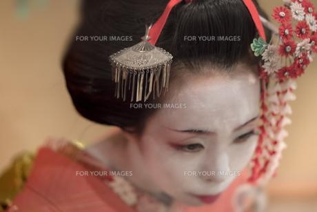 赤い着物を着た日本の可愛い芸者あるいは舞子の女の子の簪のクローズアップ。の写真素材 [FYI01226822]