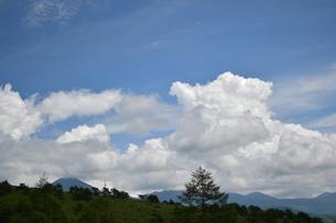 夏空の写真素材 [FYI01226944]