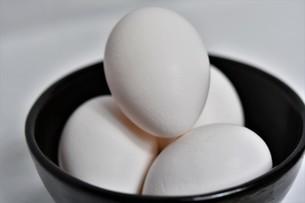 卵料理の写真素材 [FYI01227036]