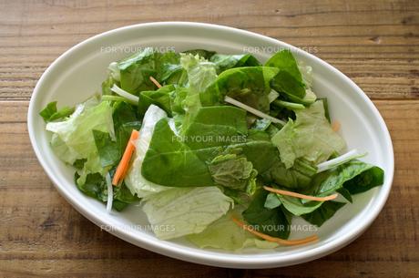 カット野菜 サラダの写真素材 [FYI01227045]