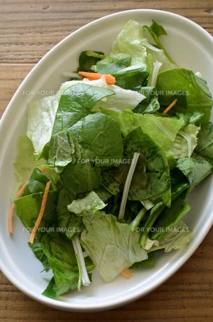カット野菜 サラダの写真素材 [FYI01227046]