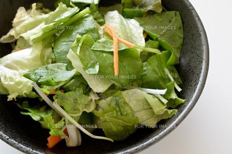 カット野菜 サラダの写真素材 [FYI01227050]