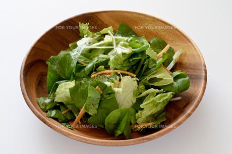 カット野菜 サラダの写真素材 [FYI01227051]