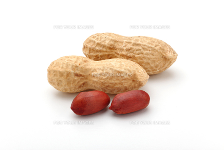 ピーナッツ 落花生の写真素材 [FYI01227355]