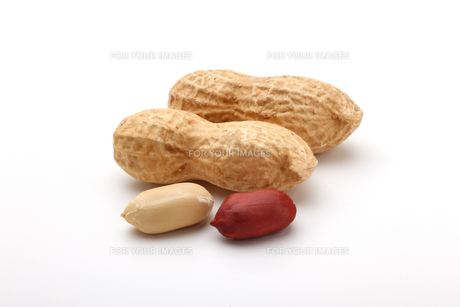 ピーナッツ 落花生の写真素材 [FYI01227356]