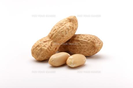 ピーナッツ 落花生の写真素材 [FYI01227358]