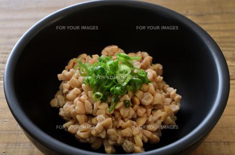 ひきわり納豆の写真素材 [FYI01227490]