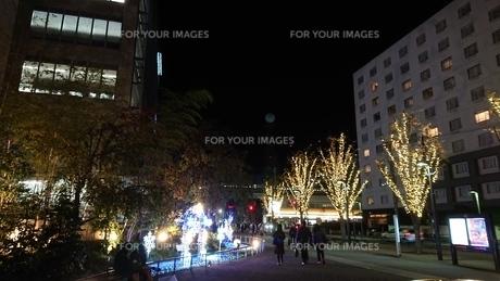 夜と歩道と光の写真素材 [FYI01227795]